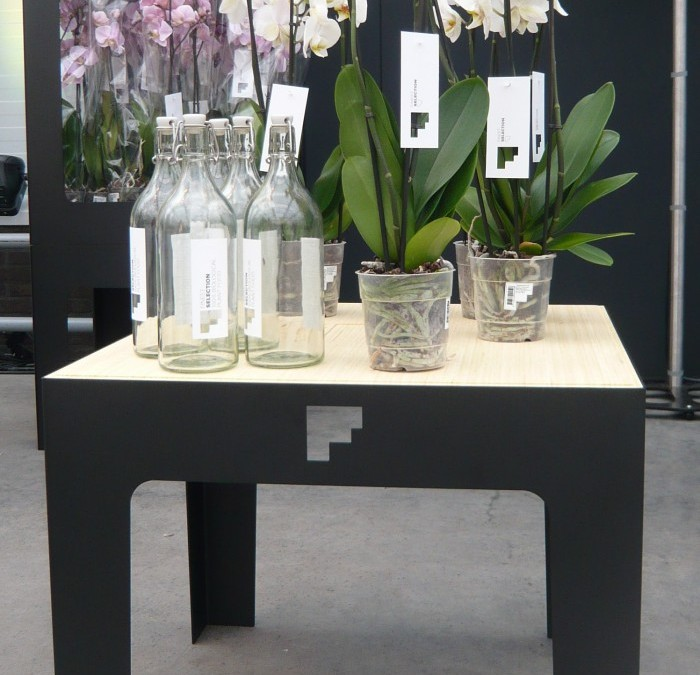 Orchideeen display II