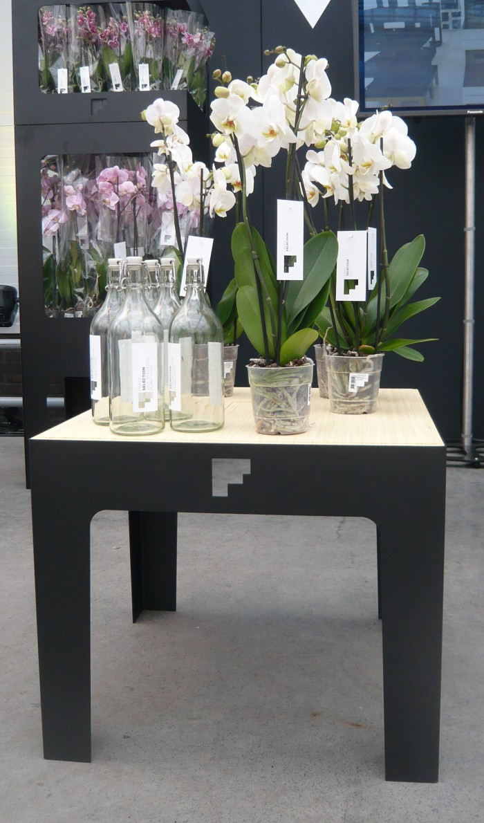 Orchideeen display maarten olden 03